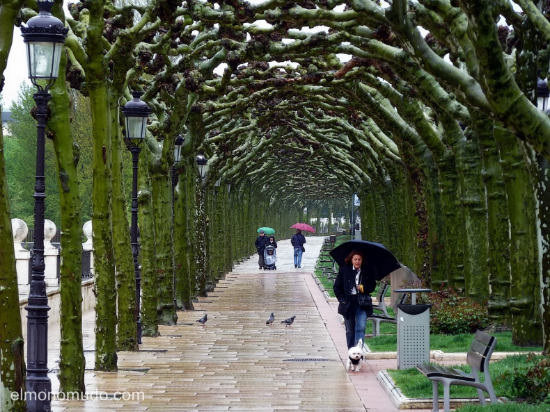 Burgos. Paseo del Espolón, un dia lluvioso de primavera.