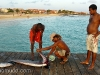 Limpiando un pez espada. Muelle de Sta. Maria. Sal. Cabo Verde