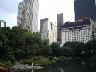 newyorkplazza.jpg