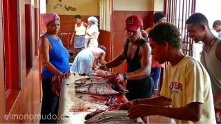 Mercado de pescado. Mindelo. Cabo Verde
