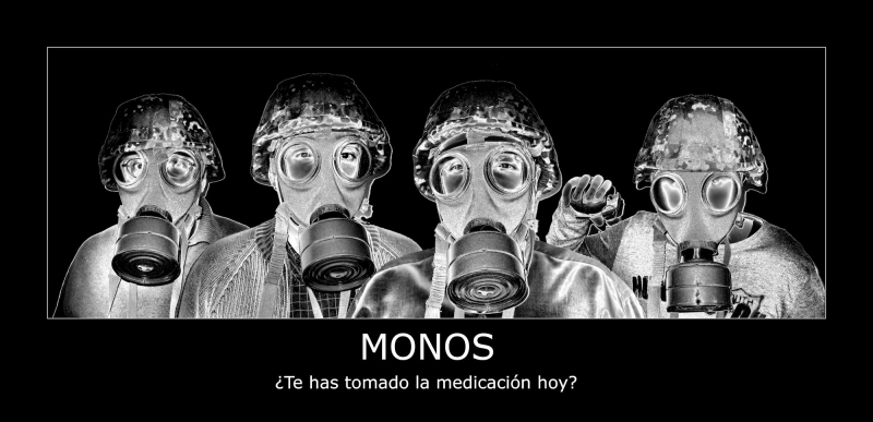 monomudos38