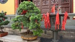 Templo Buda Jade,Shanghai