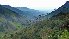 Colombia . Cocora