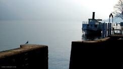 como-2011-barco-y-gaviota-ii