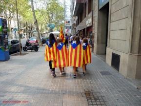diada nacional catalunya. barcelona 11.09.2012 . jovenes manifestantes con la estelada
