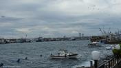 Kumkapi Balikcilar Hali Istanbul