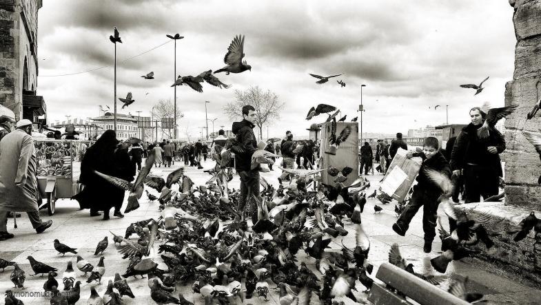 estambul-en-frente-de-mercado-especies-2011-bn