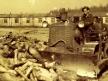 monumento-al-holocausto-berlin-2010-acarreando-cadaveres