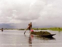 intha cruzando el lago inle. myanmar