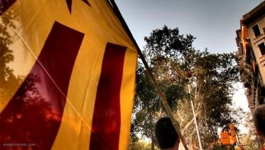manifestacio-per-la-independencia-11-de-setembre-2012-toma-1-jpg
