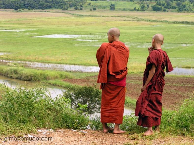 monjes budistas. myanmar