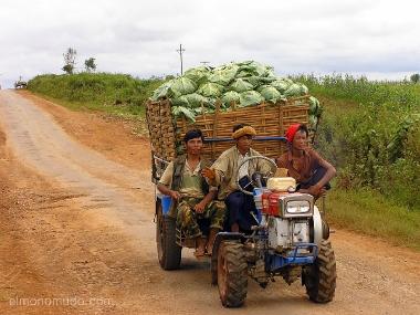 transporte hortalizas. campesinos. myanmar. birmania