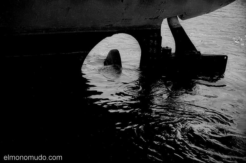 barco-en-negro