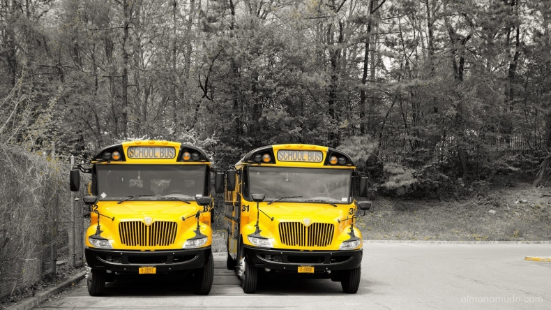 school bus. manhattan.new york city