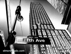 new_york_2008_black__white_empire_state_1