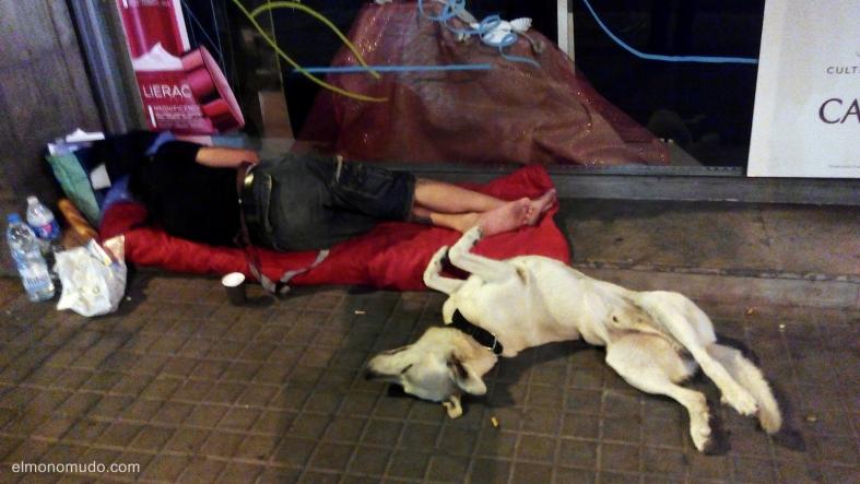 la extraña postura del perro a medianoche 1. the strange posture of the dog in the night-time 1