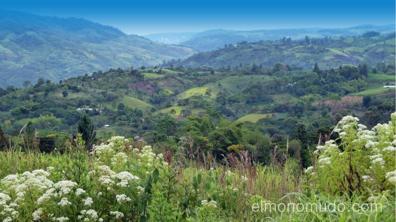 montañas de san agustin. colombia