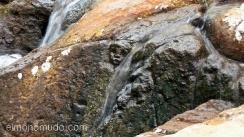 rostro esculpido en la piedra de un rio. parque arqueologico de san agustin. colombia
