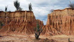 desierto de la tatacoa. colombia