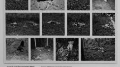 topographie-des-terror-mauthausen-prisoners-shot-dead