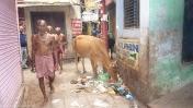 Varanasi monjes