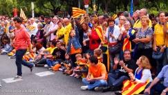 via-catalana-2013-03