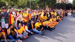 via-catalana-2013-05