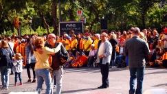 via-catalana-2013-08