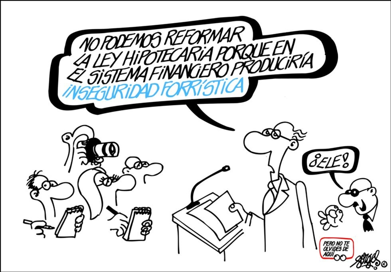 reforma ley hipotecaria  forges