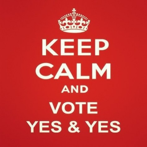 kepp calm and vote yes yes