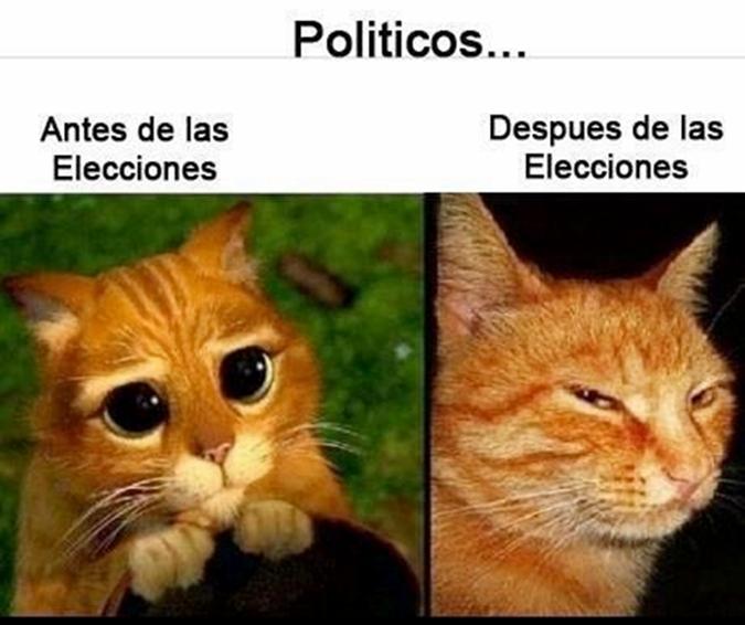 asi son los politicos 1