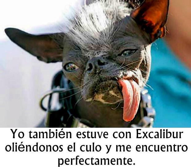 amigo de excalibur 3